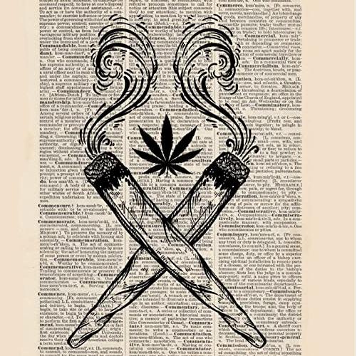 Le dictionnaire du cannabis : beuh, weed, shit, haschich…