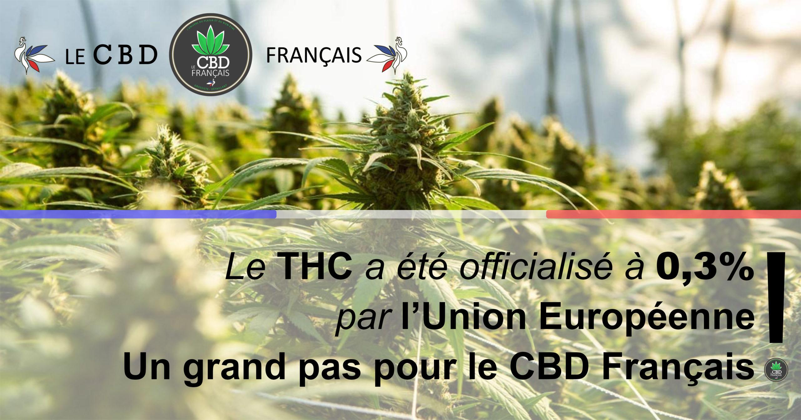 Le THC en Europe est désormais autorisé jusqu'à 0,3%!