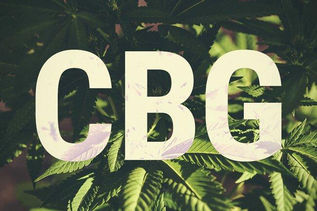 Huile de CBG vs huile de CBD : Quelle est la différence ?